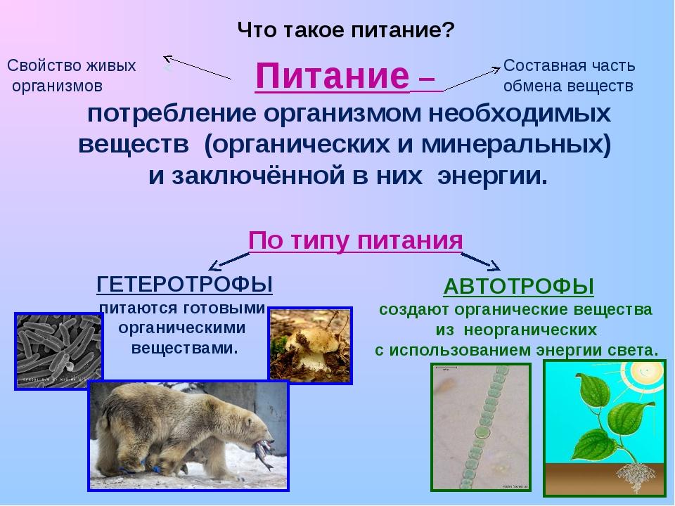 Питание – потребление организмом необходимых веществ (органических и минерал...