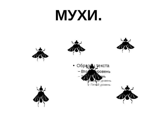 МУХИ.