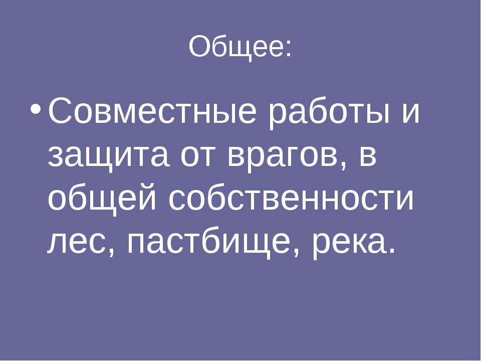 Общее: Совместные работы и защита от врагов, в общей собственности лес, пастб...