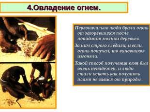 4.Овладение огнем. Первоначально люди брали огонь от загоревшихся после попад