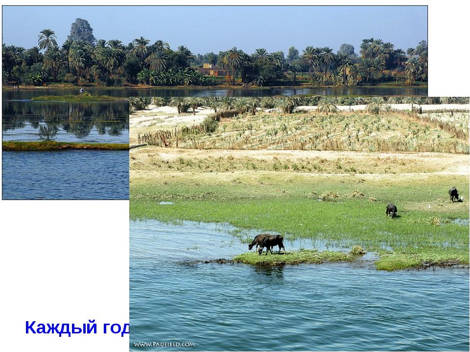 * Каждый год в июле начинался разлив Нила.