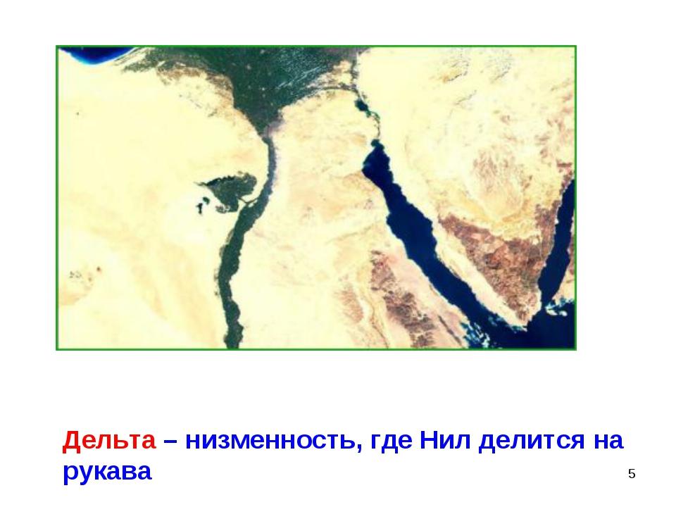 * Дельта – низменность, где Нил делится на рукава