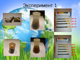 Эксперимент 1 ph=12 ph=12 ph=12 ph=12 ph=7 ph=8 ph=9 ph=10 ph=11
