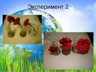 Эксперимент 2