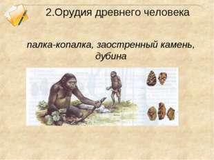 2.Орудия древнего человека палка-копалка, заостренный камень, дубина
