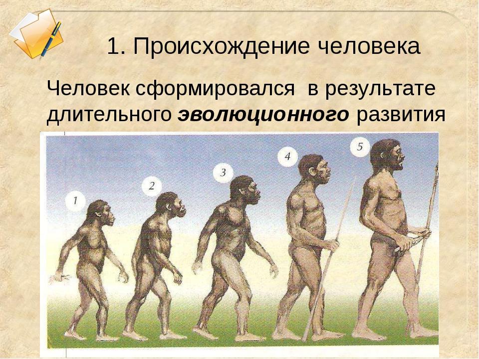 1. Происхождение человека Человек сформировался в результате длительного эвол...