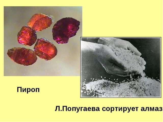 Пироп Л.Попугаева сортирует алмазы