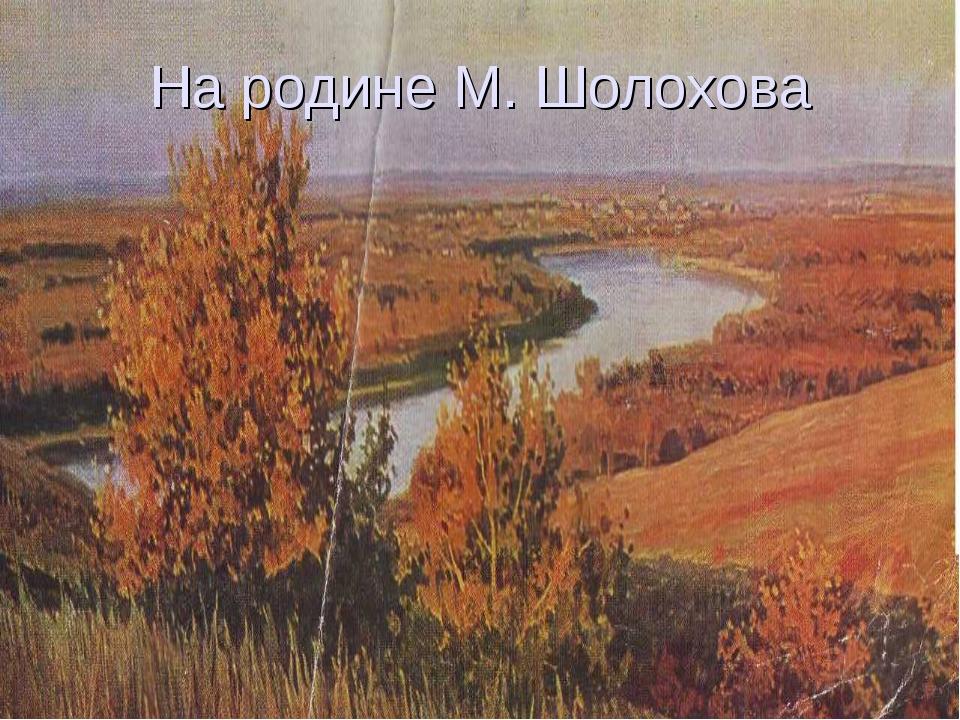 На родине М. Шолохова