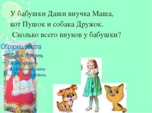 У бабушки Даши внучка Маша, кот Пушок и собака Дружок. Сколько всего внуков