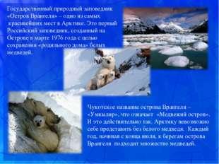 Чукотское название острова Врангеля – «Умкылир», что означает «Медвежий ост