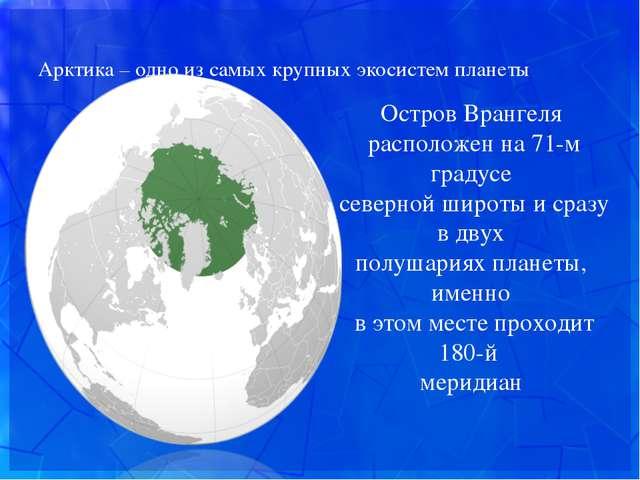 Арктика – одно из самых крупных экосистем планеты Остров Врангеля расположен...