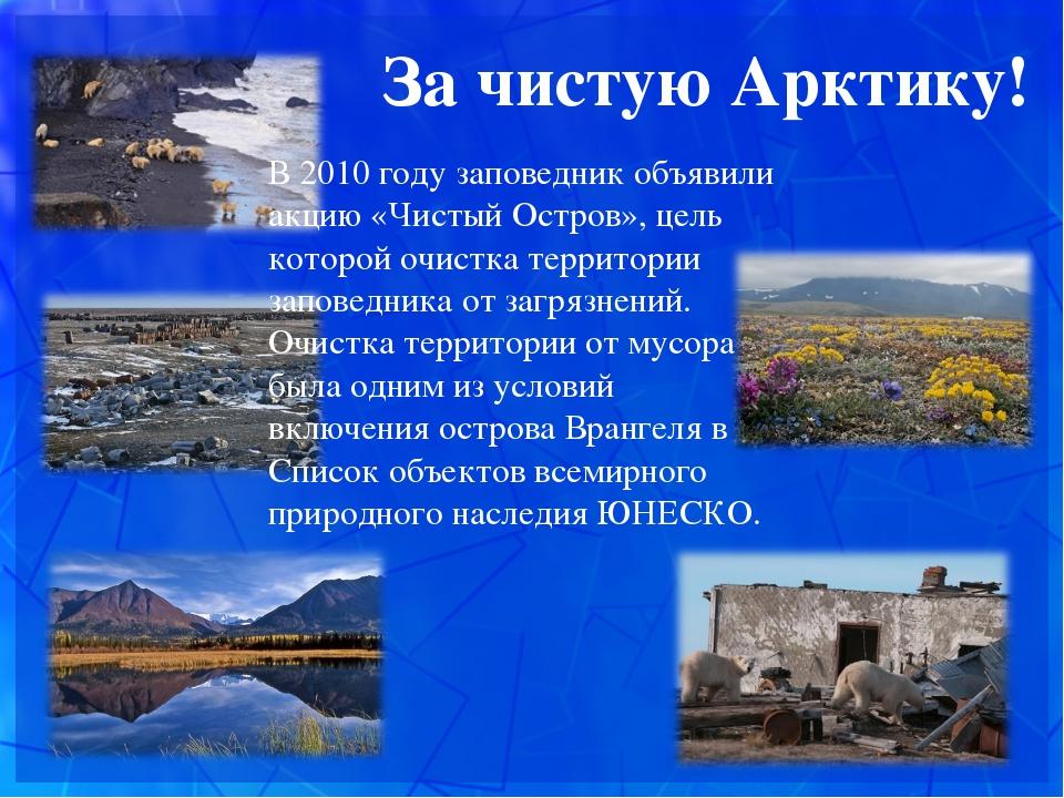 За чистую Арктику! В 2010 году заповедник объявили акцию «Чистый Остров», ц...