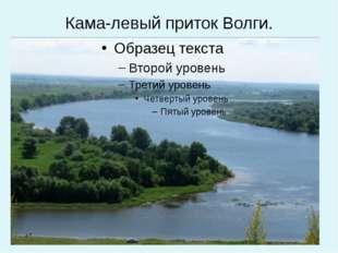 Кама-левый приток Волги.