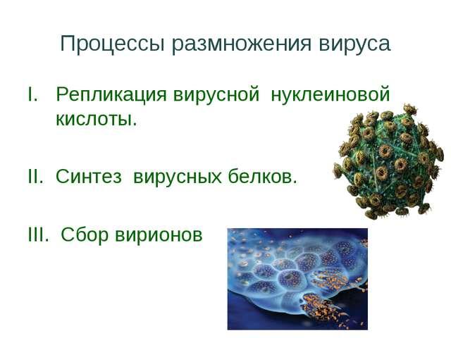 Процессы размножения вируса Репликация вирусной нуклеиновой кислоты. Синтез в...