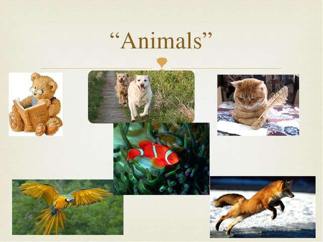 """Animals"" "