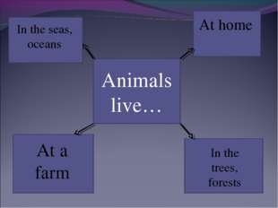 Animals live… In the seas, oceans At a farm At home In the trees, forests