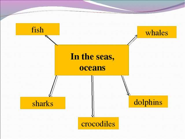 In the seas, oceans whales fish dolphins crocodiles sharks