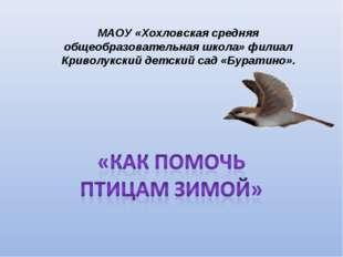 МАОУ «Хохловская средняя общеобразовательная школа» филиал Криволукский детск