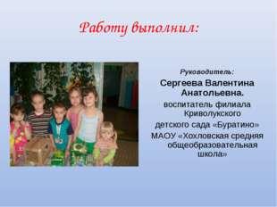 Работу выполнил: Руководитель: Сергеева Валентина Анатольевна. воспитатель фи
