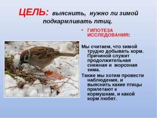 ЦЕЛЬ: выяснить, нужно ли зимой подкармливать птиц.  ГИПОТЕЗА ИССЛЕДОВАНИЯ: