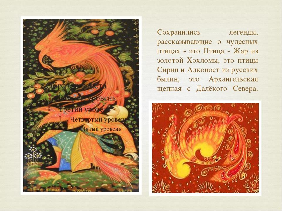 Сохранились легенды, рассказывающие о чудесных птицах - это Птица - Жар из зо...