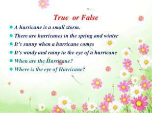 True or False A hurricane is a small storm. There are hurricanes in the spri