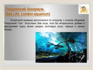 Лондонский Аквариум. (Sea Life. London aquarium) Лондонский аквариум располож