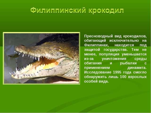 Пресноводный вид крокодилов, обитающий исключительно на Филиппинах, находится...