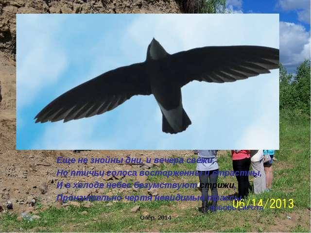 Еще не знойны дни, и вечера свежи, Но птичьи голоса восторженны и страстны, И...