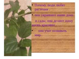Почему люди любят растения . они украшают наши дома и сады, они делают нашу