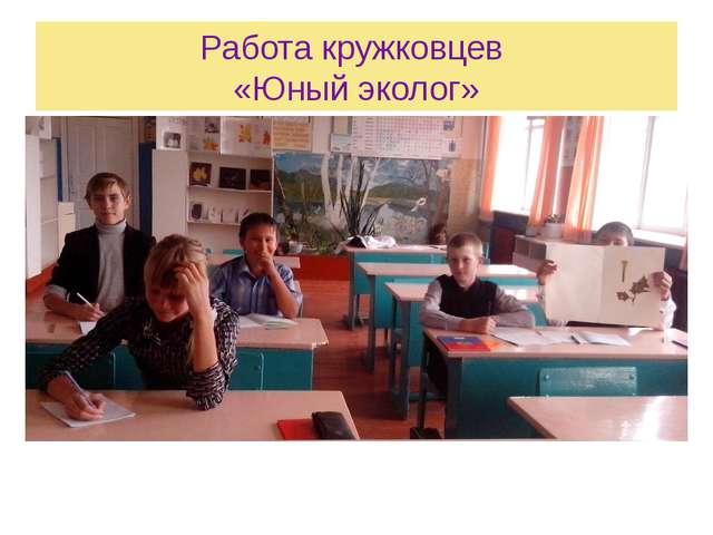 Работа кружковцев «Юный эколог» Выполнили учащиеся : Гелисханова Полина Папин...
