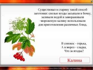 Калина В сенокос - горька, А в мороз - сладка, Что за ягодка? Существовал в с