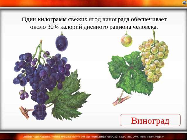 Виноград Один килограмм свежих ягод винограда обеспечивает около 30% калорий...