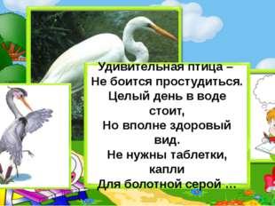 Удивительная птица – Не боится простудиться. Целый день в воде стоит, Но впол