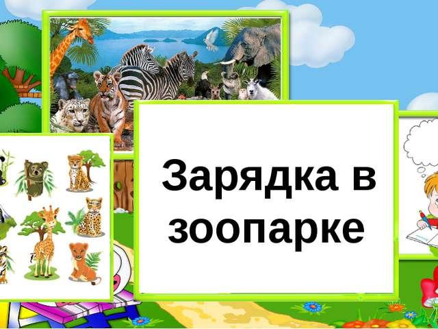 Зарядка в зоопарке