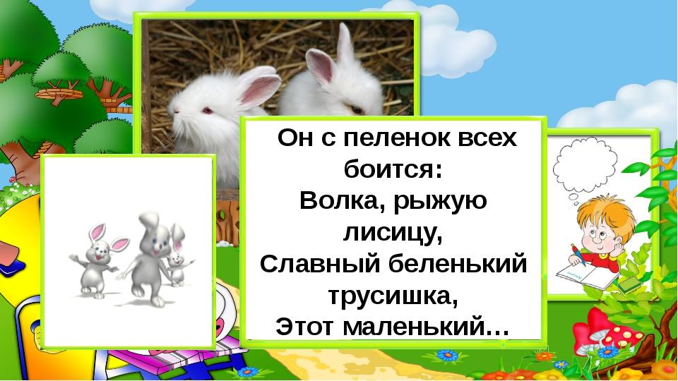 Он с пеленок всех боится: Волка, рыжую лисицу, Славный беленький трусишка, Э...