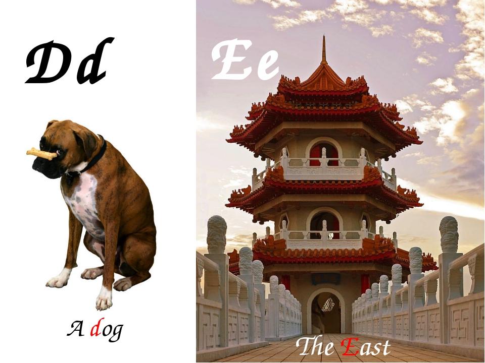 Dd Ee A dog The East
