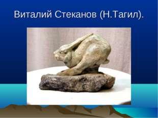 Виталий Стеканов (Н.Тагил).