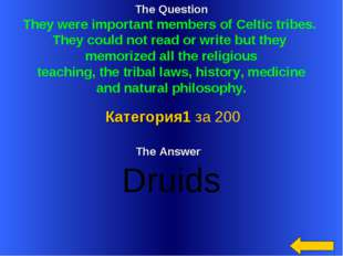 The Question They were important members of Celtic tribes. They could not rea
