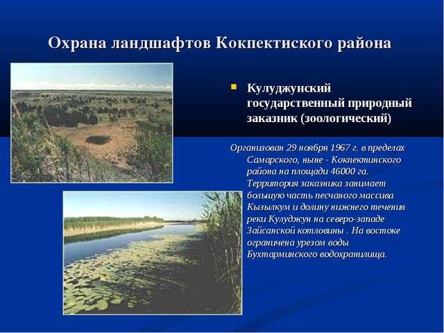 Охрана ландшафтов Кокпектиского района . Кулуджунский государственный природн...