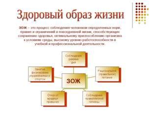 ЗОЖ – это процесс соблюдения человеком определенных норм, правил и ограничени