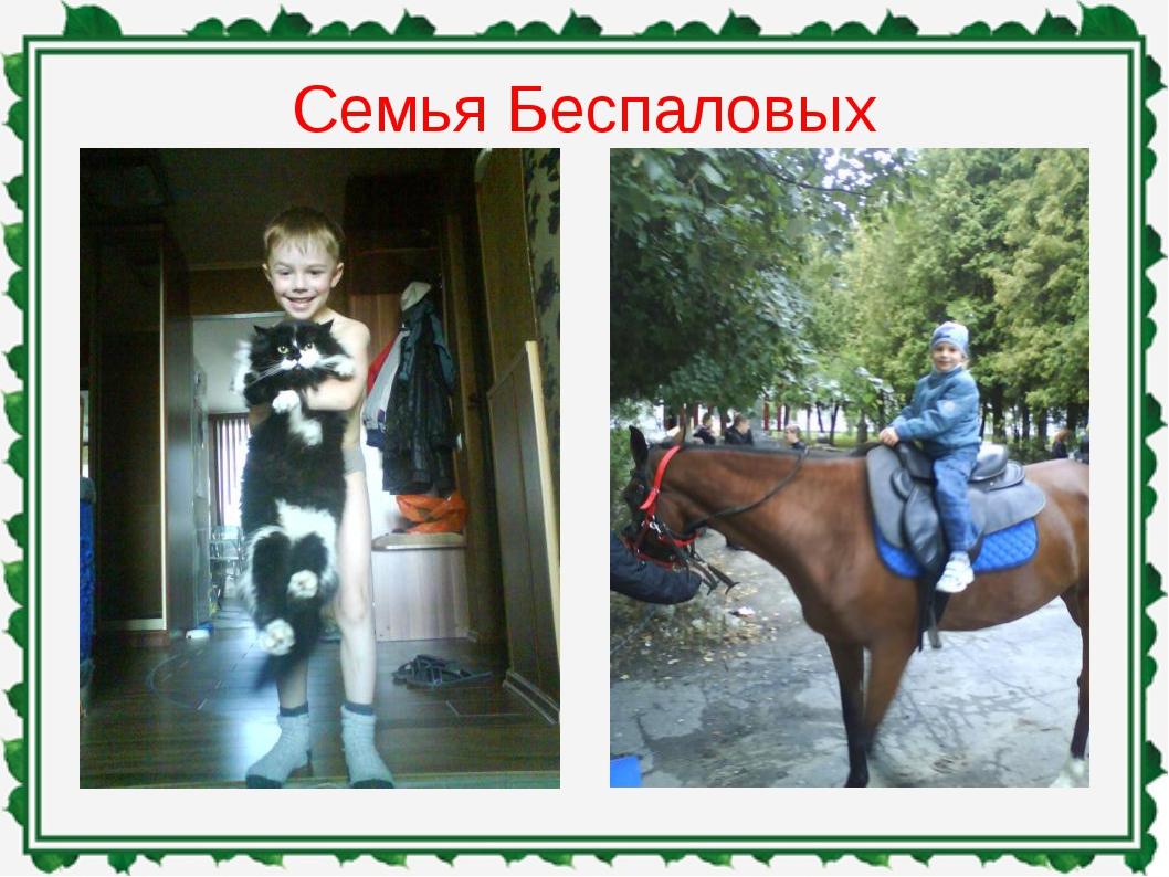 Семья Беспаловых