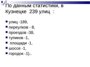 По данным статистики, в Кузнецке 239 улиц : улиц -189, переулков - 8, проездо