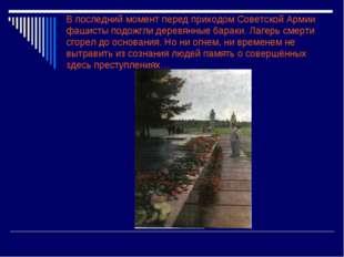 В последний момент перед приходом Советской Армии фашисты подожгли деревянные