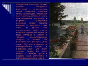 Оккупировав Советскую Латвию, фашисты немедленно приступили к осуществлению
