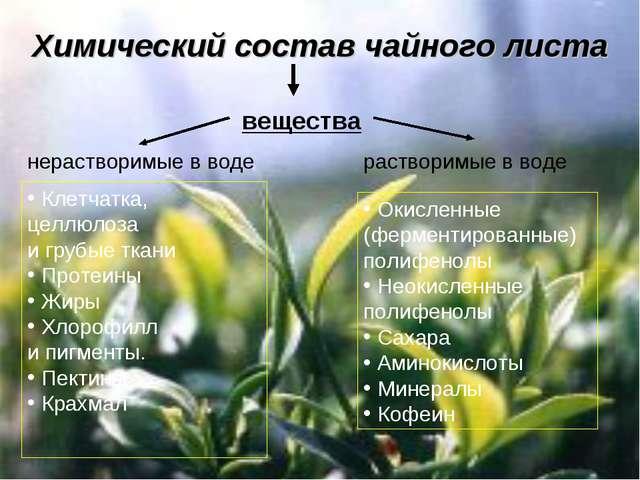 Химический состав чайного листа вещества растворимые в воде Клетчатка, целлюл...