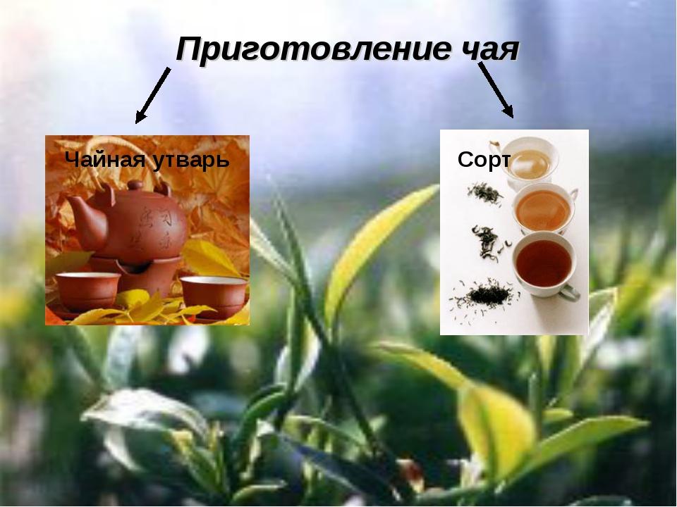 Приготовление чая Чайная утварь Сорт