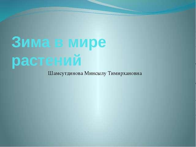 Зима в мире растений Шамсутдинова Минсылу Тимирхановна