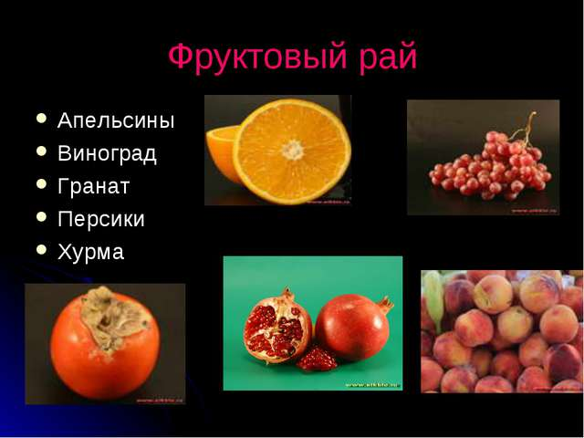 Фруктовый рай Апельсины Виноград Гранат Персики Хурма