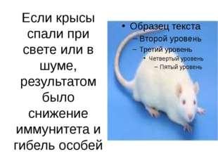 Если крысы спали при свете или в шуме, результатом было снижение иммунитета и